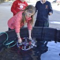 Regents School fourth-graders Olivia Mogridge (left), James Leister and Natalie Prather test their model ROV in a vat of water at the school. Photo by Michelle Edwards