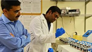 S. Narasimha Murthy (left) observes graduate student Abhishek Juluri as they conduct research on cyclodextrin derivatives.