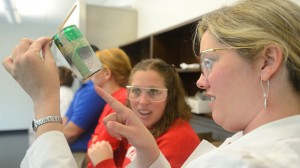 Middle and high school teachers develop hands-on science lessons during ASM Materials Camp, one of many professional development opportunities provided by the CMSE.