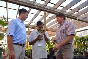 NCNPR staff members Robert Cooper (left), Lal Jayaratna and Ed Lowe examine medicinal plants at the center's garden. Photo by Robert Jordan/Ole Miss Communications