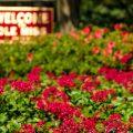 UM Makes Kiplinger's 'Best Values' List for Fifth Year