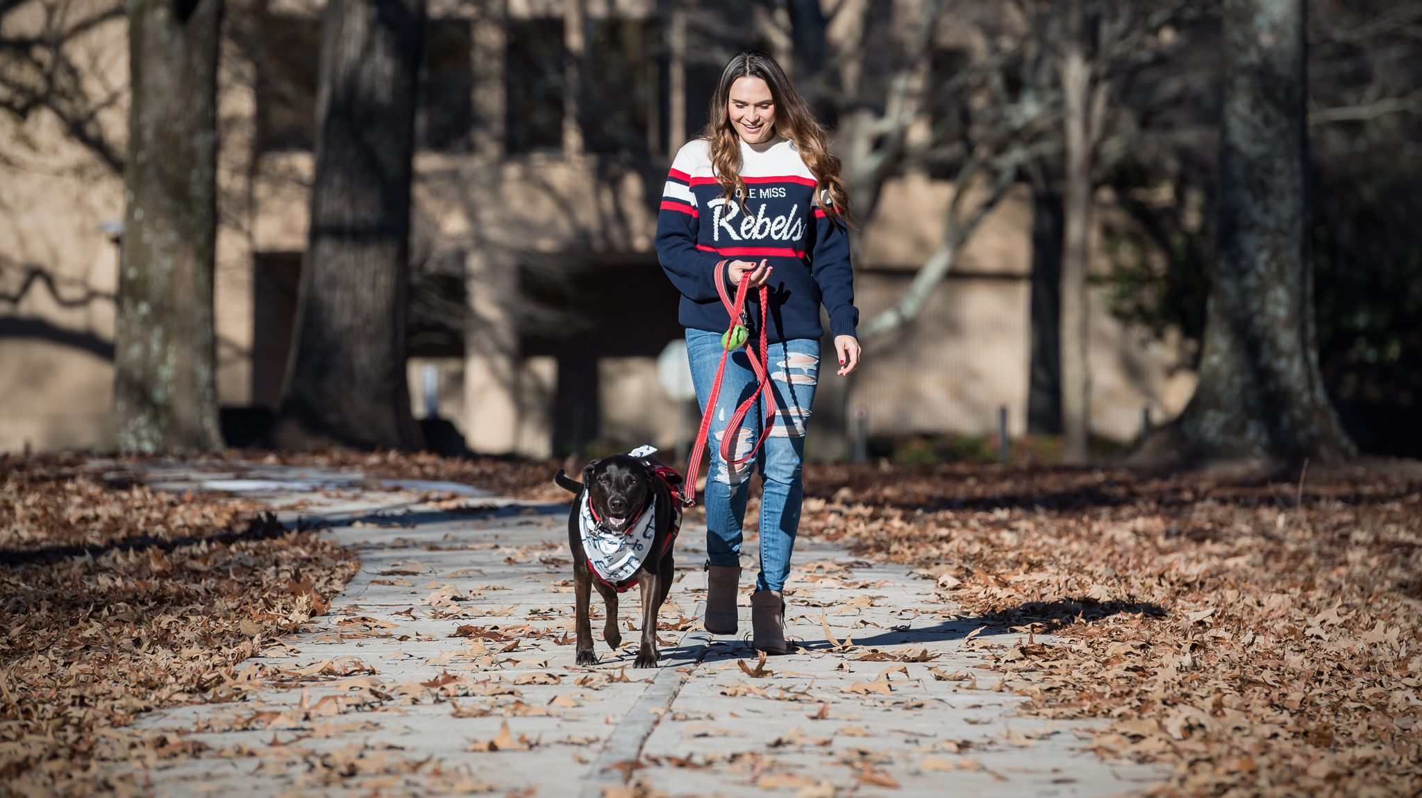 Image of: Petition Um Accounting Major Lauren Graham Walks Her Emotional Support Dog Lilly On Campus Graham Is Military Veteran Who Received Help From The Universitys Painted Paws For Veterans Veterans Treatment Team Offers Comprehensive Services Ole Miss News