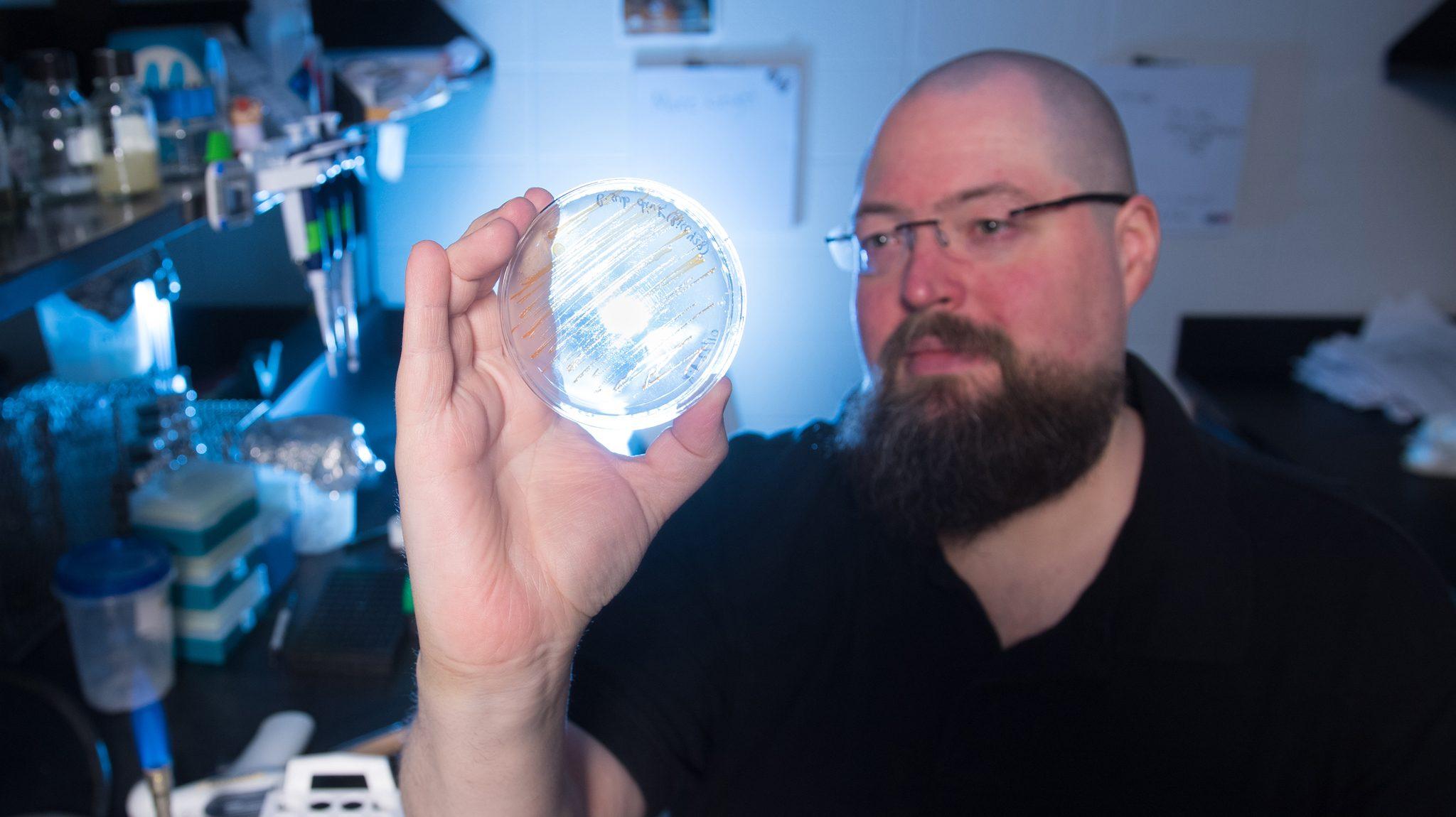 How Do Bacteria Handle Microgravity? - Ole Miss News