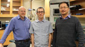 UM Scientists Discover Novel Method for Catching, Maneuvering Droplets