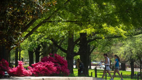 University Earns 'Tree Campus' Distinction